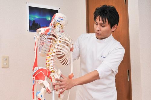 大田区整体院院長石山と骨格模型 (1)