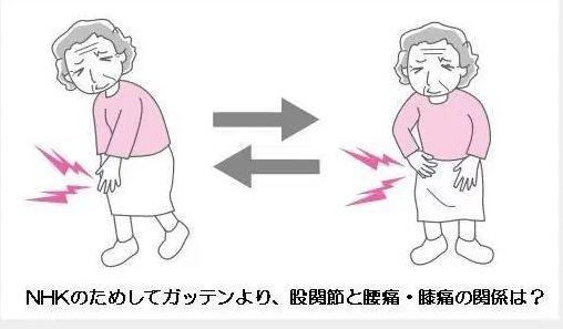 大田区,ひざの痛み,整体